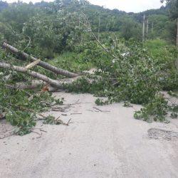 Un drum a fost blocat mai mult de o oră