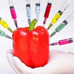 Cele mai periculoase alimente din lume! Majoritatea sunt interzise! (XIII) - Alimentele modificate genetic