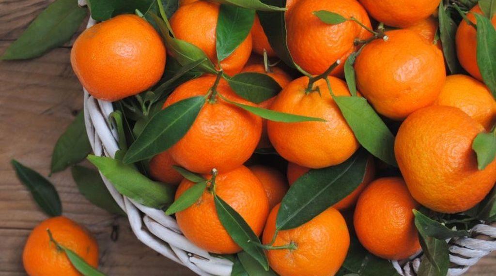 o-gustare-savuroasa-de-sezon-cu-ce-poti-asocia-clementinele